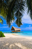 Diving club on a tropical island. Travel background Royalty Free Stock Photo