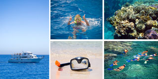 Diving. A collage royalty free stock photo