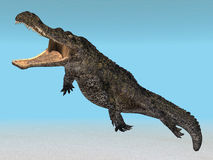 Diving Crocodile Stock Photo