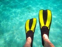 Diving. Deep Diving in turquoise adriatic water, near Åibenik, Croatia, Europe stock photo