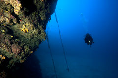 Diving in deep water. A scuba diver is exploring an underwater wall in deep blue water royalty free stock images