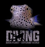 Diving diver scuba box fish - T-shirt design. This t-shirt design can be printed straight onto blck t-shirt. Looks perfect on t-shirt stock photos