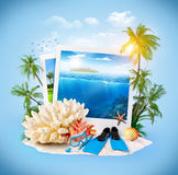 Diving equipment. And corals on sand. Travel Background stock photo