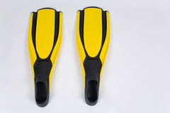 Diving fins Royalty Free Stock Photo