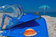 Diving fins and mask Stock Image