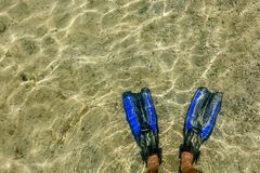 Diving fins on the Mediterranean coast royalty free stock images