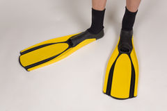 Diving flippers Stock Images