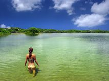 Diving girl. Woman swimming in the lagoon. Brazil royalty free stock photos