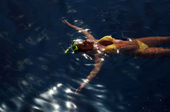 Diving girl in the sea surface. Relaxing diving girl in the sea surface Stock Photos