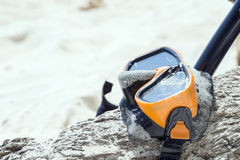 Diving Goggles and Snorkel Gear wood tree on white sand near bea Royalty Free Stock Photos