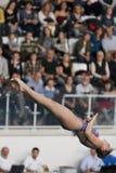 Diving Italian indoor championships Stock Images