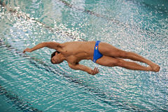 Diving Italian indoor championships Stock Photos