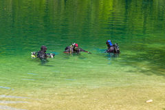 Diving in a lake Stock Image