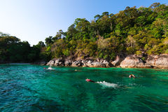 Snorkeling. Diving at lipe island clear water Stock Image