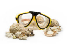 Diving mask. Yellow diving mask with sea shells Stock Photography