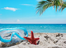 Diving mask and red starfish Royalty Free Stock Photography