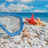 Diving mask and shell Royalty Free Stock Images