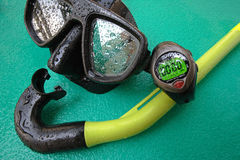 Scuba diving mask with snorkel and timer. Diving mask with snorkel and timer on a wet green background Stock Photo