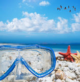 Diving mask and starfish under a flock of flamingos Royalty Free Stock Photography