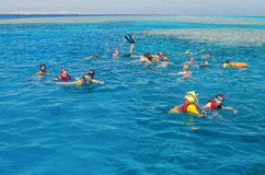 Diving. People actively relax, swim in the Red Sea. Royalty Free Stock Images