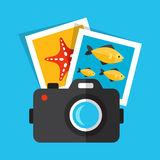 Diving photo 2 Royalty Free Stock Images