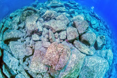 Diving in rocks with no reef underwater Stock Photos