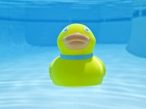 Diving Rubber Duck Stock Photo