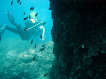 Diving in salento Royalty Free Stock Photos