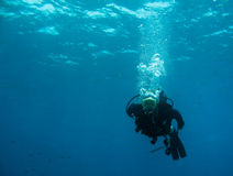 diving scuba Στοκ εικόνες με δικαίωμα ελεύθερης χρήσης
