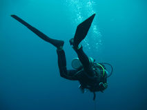 Diving in sea Royalty Free Stock Photo