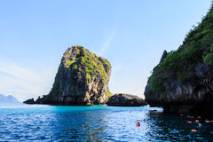Diving in sea at Trang ,Thailand Stock Photos