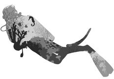 Diving. Silhouette of diver. within the seabed marine inhabitants, corals and algae. black and white, illustration, white background vector illustration