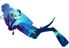 Diving. Silhouette of diver. within the seabed marine inhabitants, corals and algae. illustration, white background vector illustration