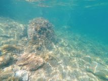 Diving to the clean sea water. At cesme izmir stock photos