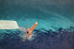 Diving into the water. Diving into the swimming pool Royalty Free Stock Image
