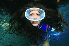 Diving woman Stock Photos