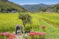 Divinità del guardiano del giacimento del riso immagini stock