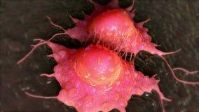 Divisão de célula cancerosa ilustração do vetor