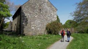A divisão do castelo em Irlanda do Norte perto de Belfast é um marco popular video estoque