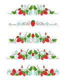 Diviseurs des textes de vecteur avec la fraise et la fleur Photographie stock