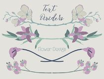 Diviseurs floraux colorés des textes de vecteur Éléments de conception de fleur illustration libre de droits