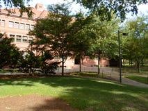 Divisez Hall, yard de Harvard, Université d'Harvard, Cambridge, le Massachusetts, Etats-Unis Images stock