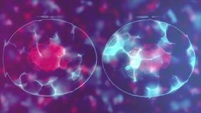 División de célula ilustración del vector