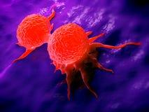 División de la célula cancerosa del pecho Foto de archivo