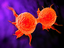 División de la célula cancerosa del pecho Foto de archivo libre de regalías
