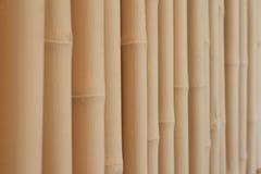 Divisiones de bambú blancas Fotografía de archivo libre de regalías