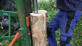 Divisor de madeira hidráulico video estoque