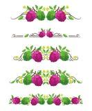 Divisori del testo di vettore con la cherimolia ed il fiore royalty illustrazione gratis