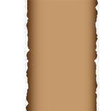Divisoria del rasgón de Brown Fotografía de archivo libre de regalías