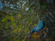 Divje Jezero of Wild Meer, geologisch fenomeen in Slovenië stock fotografie